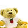 BABBAGE BEAR OFICIAL RASPBERRY PI